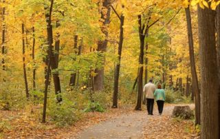 Elderly couple in woods - Autumn Flora and Fauna Excursions for the Elderly